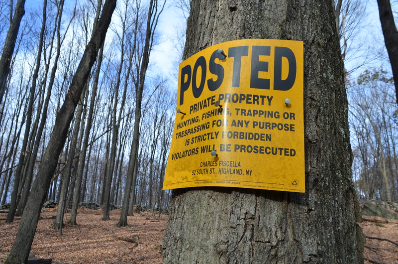 Many no hunting signs are posted along the back south portion of the property line by our former neighbor, Charles Fiscella.