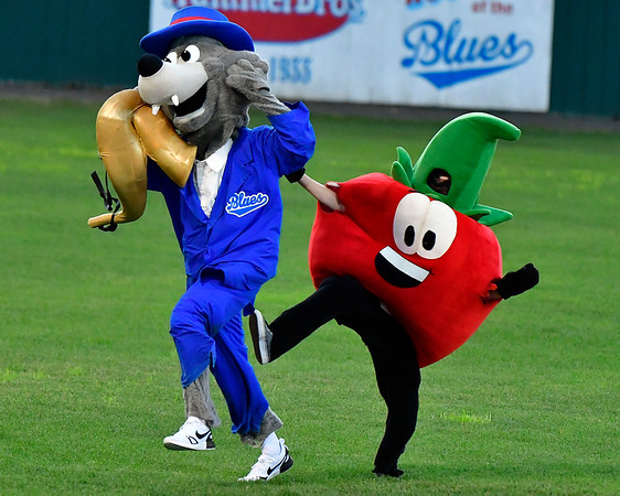 8/8/2019 Mike Orazzi | Staff The Bristol Blues mascot race during Thursday evenings playoff game with the North Shore Navigators at Muzzy Field in Bristol.