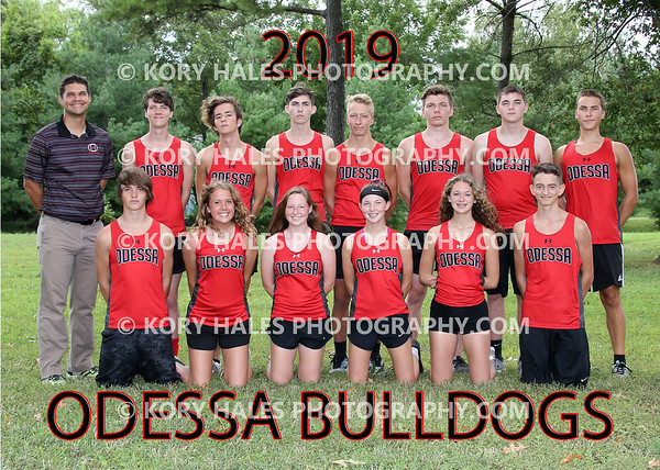 2019 OHS Cross Country