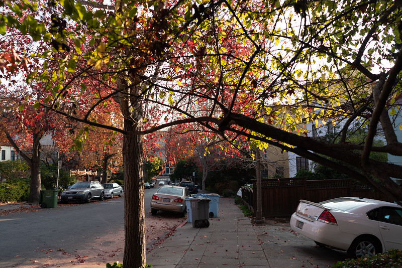 Berkeley-2.jpg