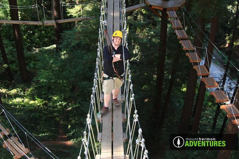 sequoiaportrait_1475700127205.jpg