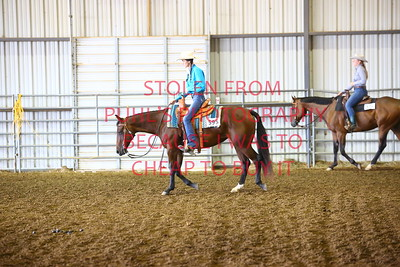 fri 11 - RANCH HORSE - ADULT round 2 and finals