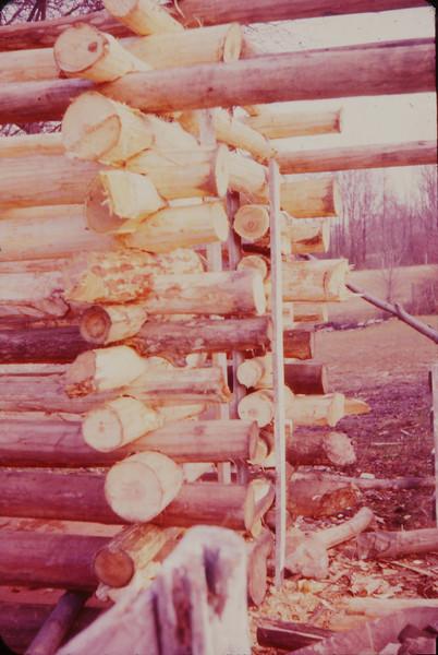 Cabin 1975 - 042.jpg