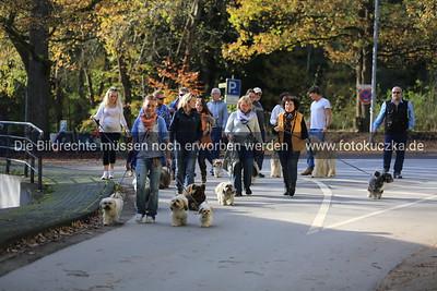 18.10.2014  IGT-Spaziergang Glör