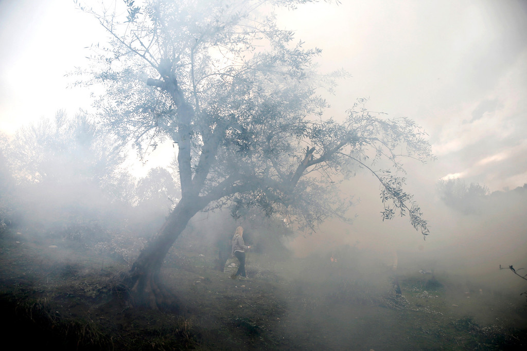 . Smoke from burning olive twigs obscures workers in an olive grove in Kalo Pedi village, about 335 kilometers (210 miles) west of Athens, Greece on Monday, Dec. 2, 2013. Traditionally, trees are trimmed and the twigs are burned at the start of spring, but many people who are based in the big cities burn the twigs after harvest to avoid another trip to the grove in March. (AP Photo/Petros Giannakouris)