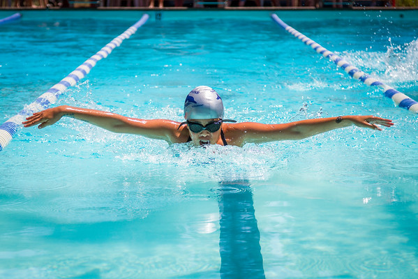 ALT Dolphin's Swim Team