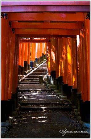 Japan 2007 FUSHIMI-INARI