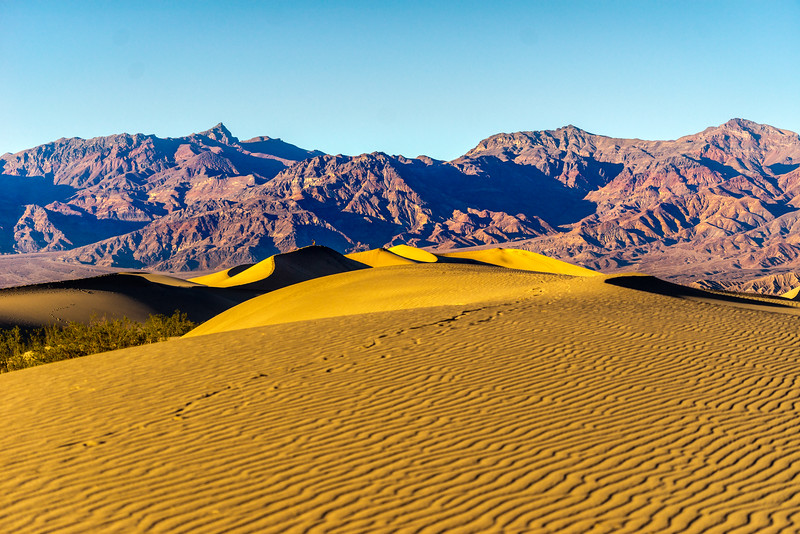 Death Valley-2233.jpg