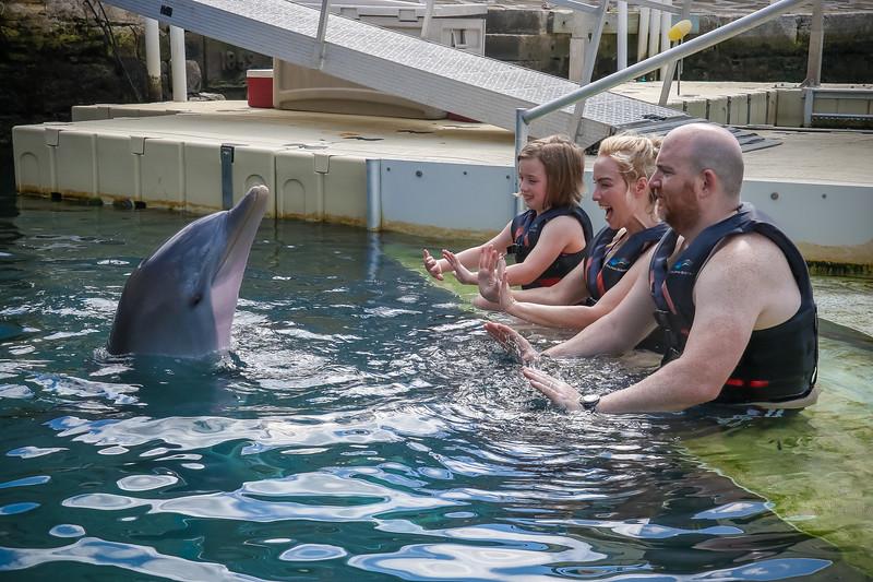 2019 August Dolphin Quest-19.jpg