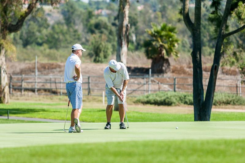 Golf242.jpg