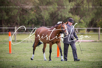 Margaret River Ag Show October 15th 2016: BREEDS