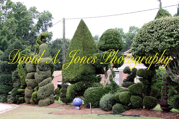 Pearl Frye's Garden