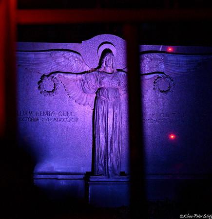 Woodlawn Cemetery Illuminated Angels 2019