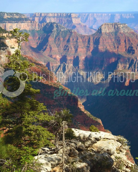 Grand Canyon_batch_batch.jpg