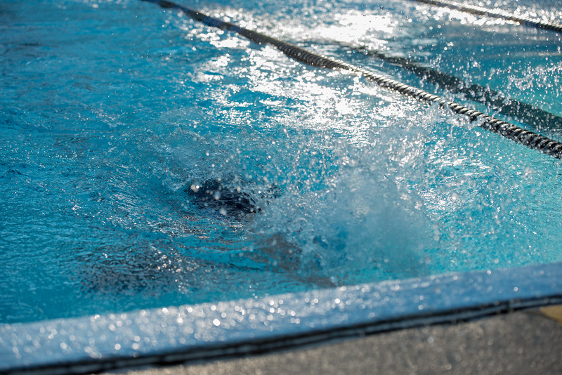 lcs_swimming_kevkramerphoto-130.jpg