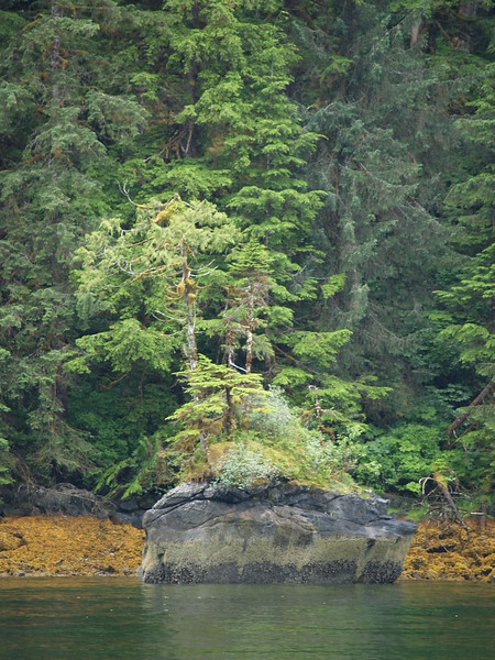 Punchbowl in Misty Fjords National Monument