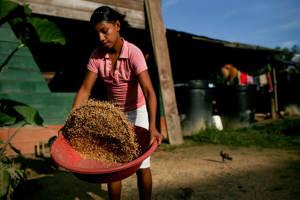Colombian women lead struggle for land restitution