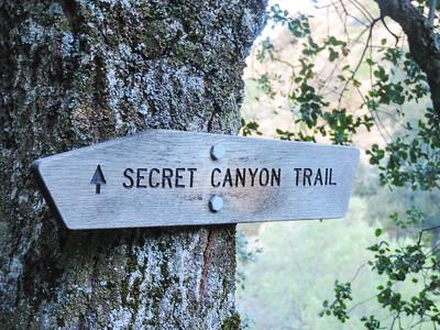 Secret Canyon Trail 04-28-2017