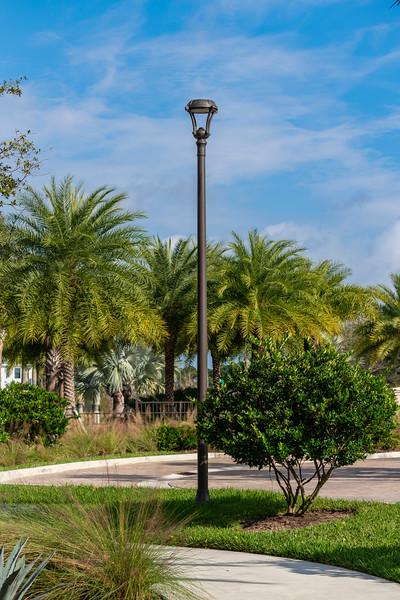 Spring City - Florida - 2019-201.jpg