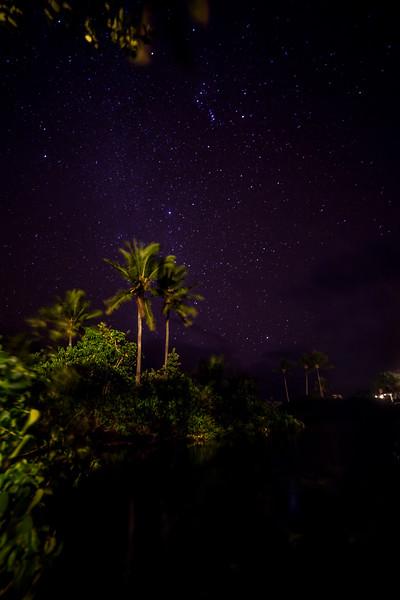 Stars at the Lagoon House