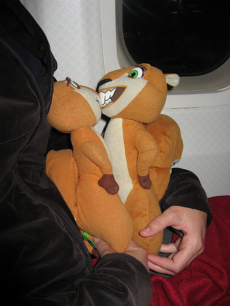 Hammy and Brenda decided it was ok to make out on the plane. They wanted to join the mile high club!