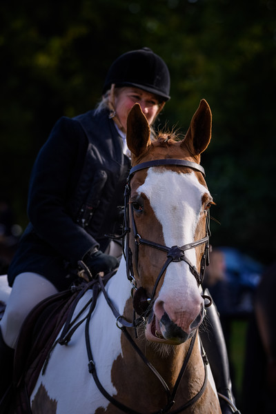 Fitzwilliam Opening meet Nov 2019-93-55.jpg