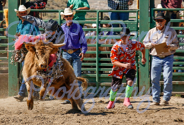 Meeteetse Labor Day Rodeo 2015
