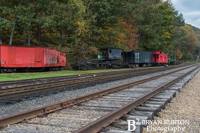 Cass Scenic Railroad 2015