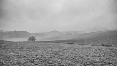 Heitenried 2013 (Fog)