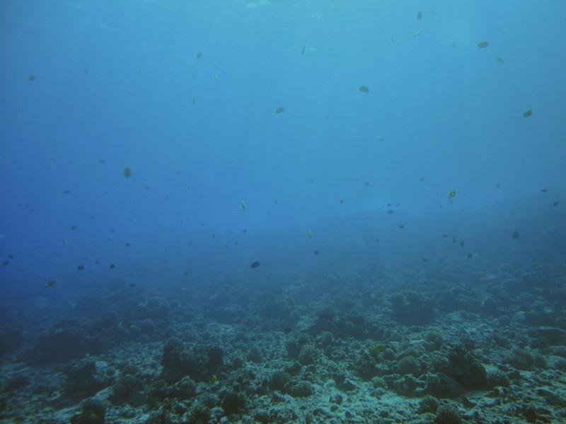 Maui - Hawaii - May 2013 - 15.jpg