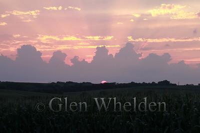 """Sunset Over Corn"""
