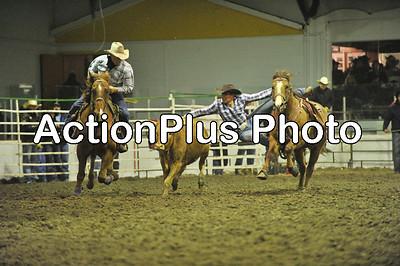 PCCA11 steer wrestling