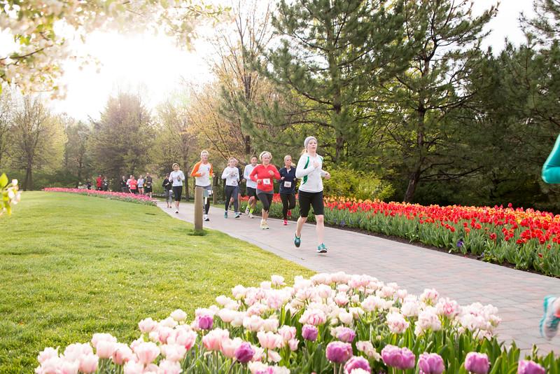 TulipFestHalfMarathon_Runners_Gardens_2015_IMG_4746.jpg