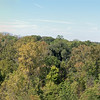 Tree House panorama at the Cox Arboretum