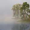 Fog on lake
