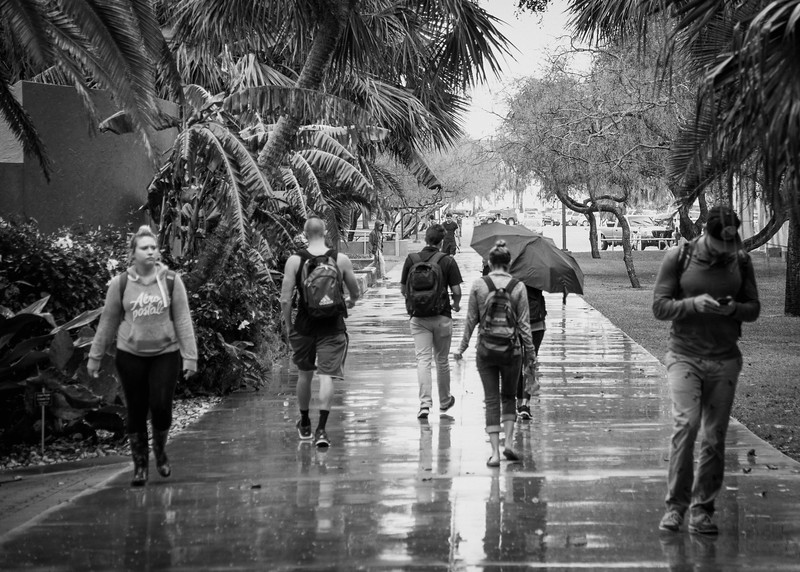 Islanders make their way to and from classes on a wet day.