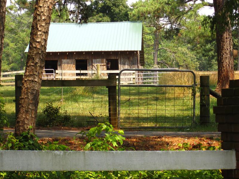Blue Ridge Plantation Off Thompson Rd Milton GA (31).JPG