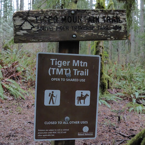 Tiger Mountain 20150119