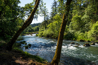 The Row River,Or.