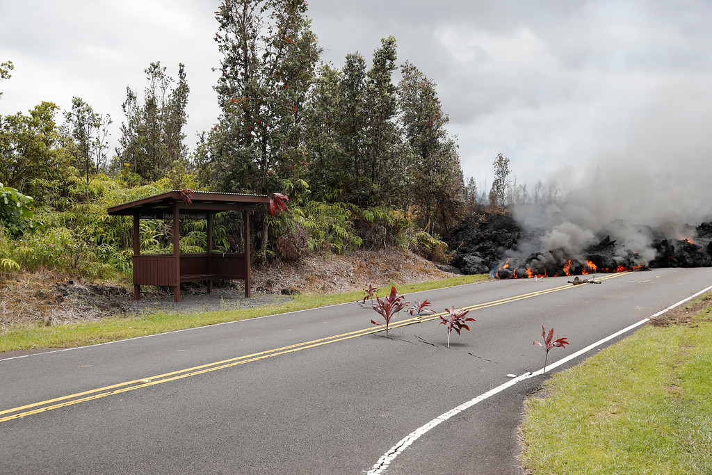 . Lava approaches a city bus stop at the Leilani Estates, Saturday, May 5, 2018, in Pahoa, Hawaii. The Hawaiian Volcanoes Observatory said eight volcanic vents opened in the Big Island residential neighborhood of Leilani Estates since Thursday.  (AP Photo/Marco Garcia)