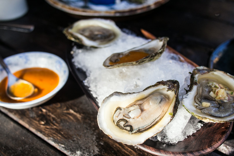 oysters shucked on ice.jpg