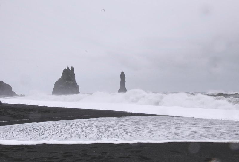 Iceland_Heather 4299.jpg