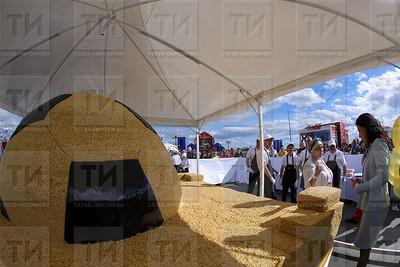 14.06.2018  Открытие фестиваля болельщиков FIFA Fan Fest (Салават Камалетдинов)