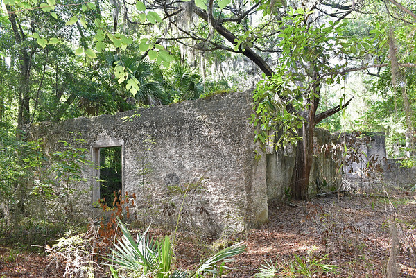 Morningstar Youth Estate - Santo Domingo - Elizafield Plantation 07-20-16