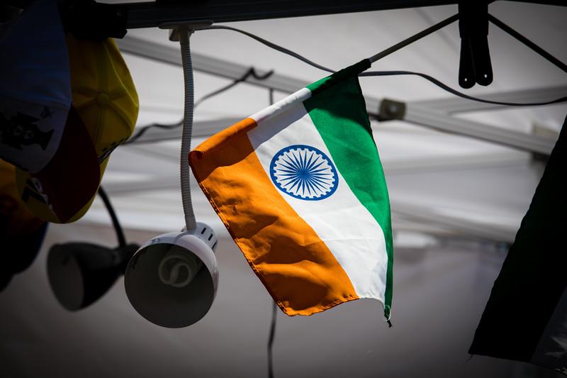 Flags At desiFEST 2018