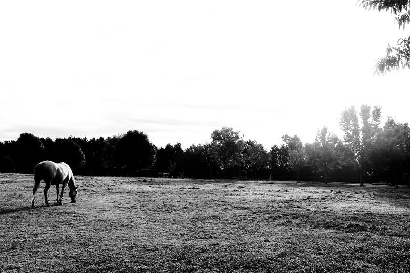 siouxmorning-2.jpg