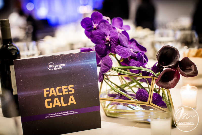 NYC Langone FACES Gala 2018