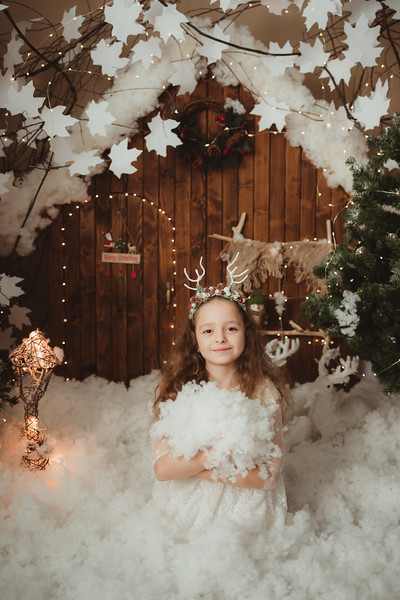Craciun 2019_Catalina Andrei Photography-37.jpg