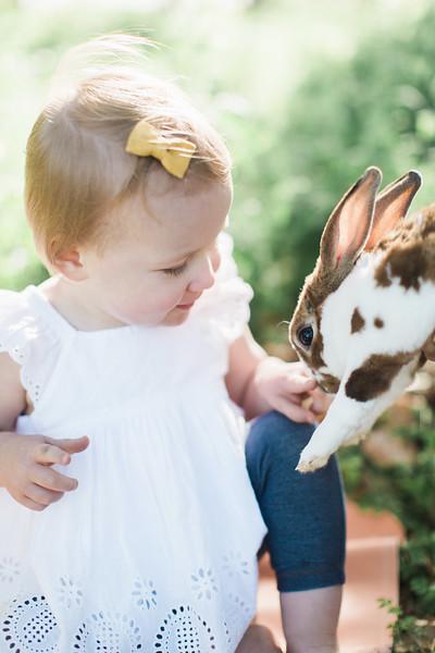 Bunny Pics!
