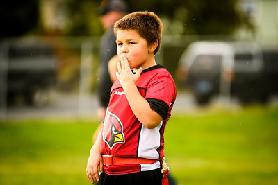 Cardinals vs Broncos 9/28